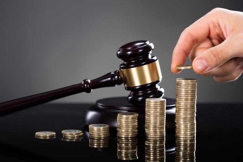 Litigation Finance Market