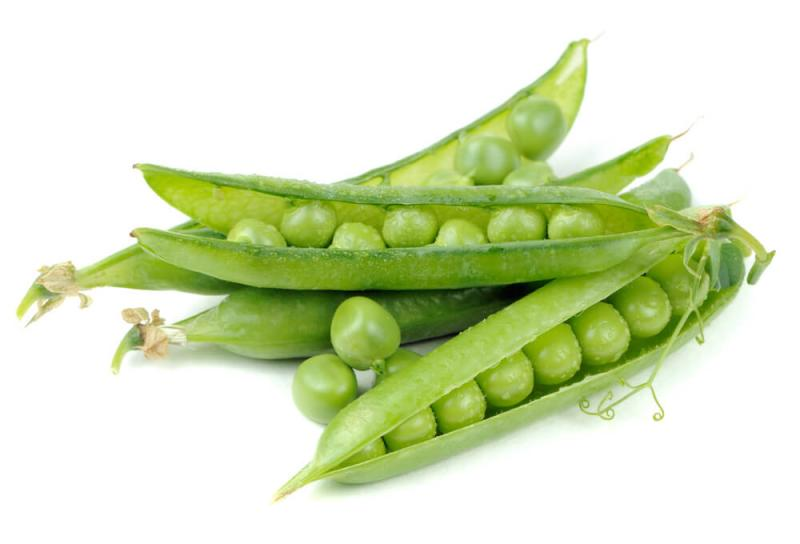 Pea Protein Isolate Market Trends