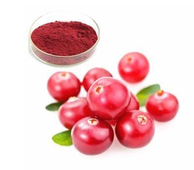 Lingonberry Extract Market
