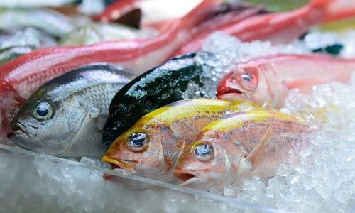 Frozen Fish Market Emerging Scope 2019   AquaChile, Clearwater