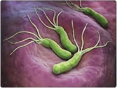 Helicobacter Pylori Testing Market