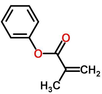 Phenyl Methacrylate Market