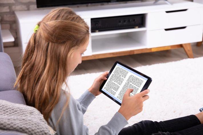 E-book Reader market