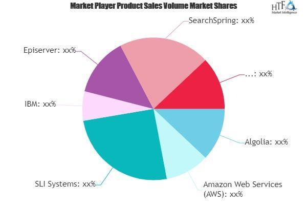 Digital Commerce Search Market