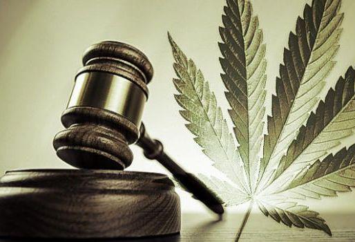 Marché légal du cannabis
