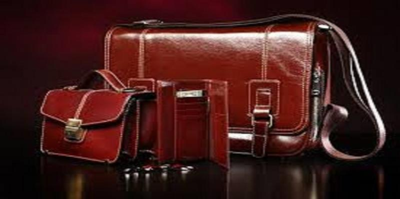 Global Luggage And Handbags Market Analysis 2020 Rimowa GmbH,