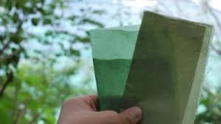 "Global Biodegradable Paper and Plastic Packaging Market"".