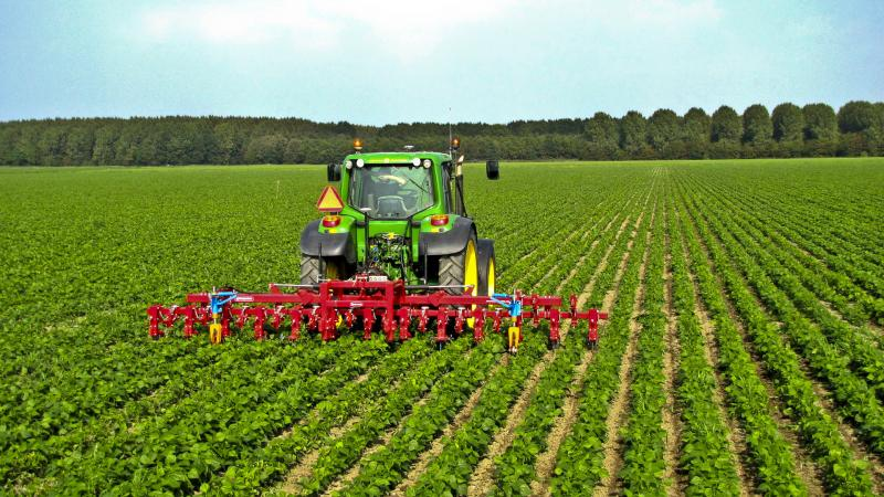 Agricultural Crop Insurance