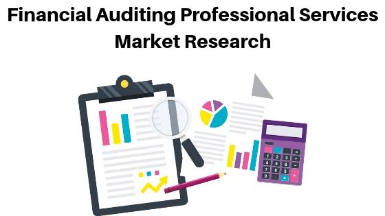 Financial Auditing Professional Services