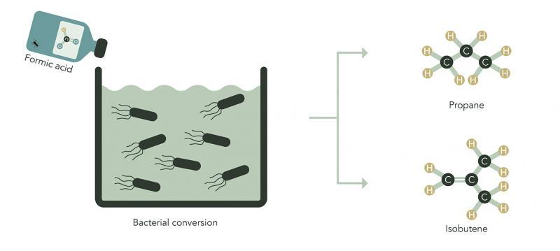 eForFuel-engineered microorganisms convert formic acid to gaseous propane and isobutene.