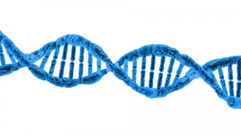 Prenatal DNA Sequencing Market