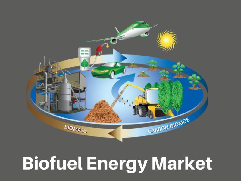 Biofuel Energy Market