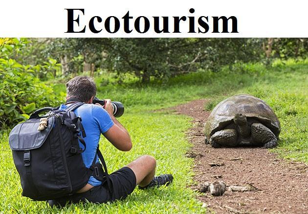 Ecotourism Market