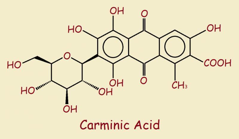 Carminic Acid  Market