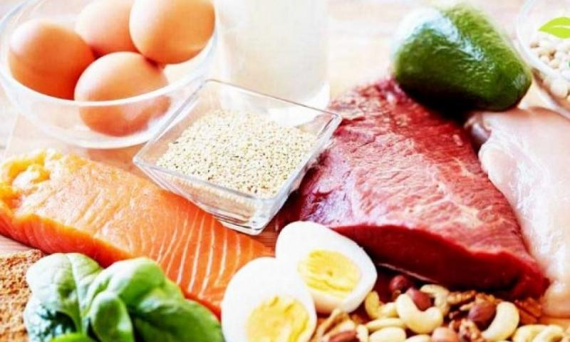 Feed Proteins
