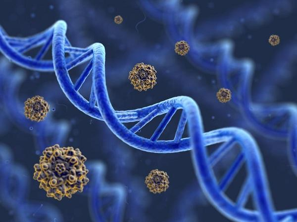 Gene Therapy Market 2019-2027|Latest Research Report