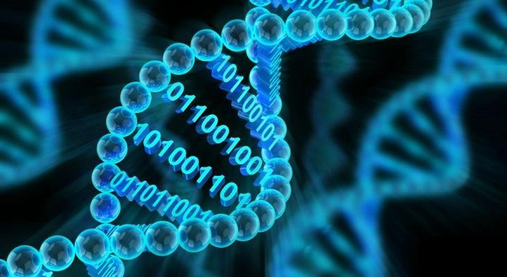 Bioinformatics Platforms Market to 2027