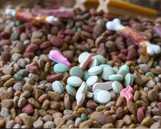 Actions complètes du marché des produits chimiques pour la nutrition animale,