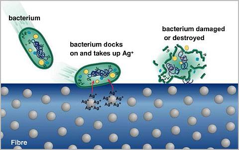 Emerging and High-growth Segments of Antimicrobial Textile
