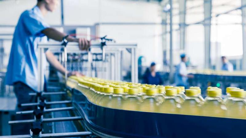 Global Industrial Automation Food Safety and Inspection Market