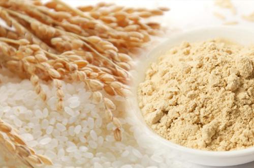 Global Organic Rice Protein Market