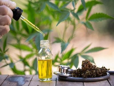 Hemp Oil Market 2020-Global Size, Key Companies, Revenue, Growth, Trends, Statistics and 2026 Forecasts Research