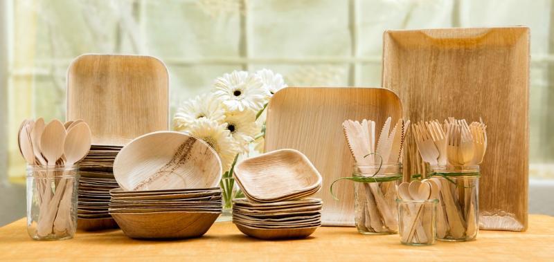 Global Biodegradable Tableware Market