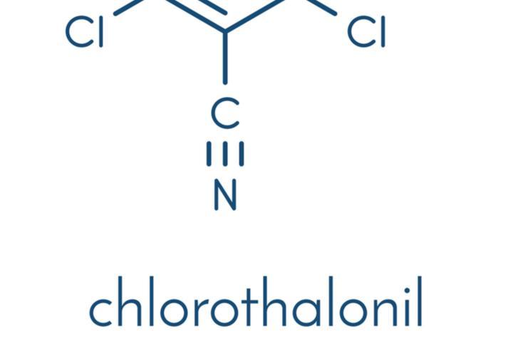 Marché du chlorothalonil