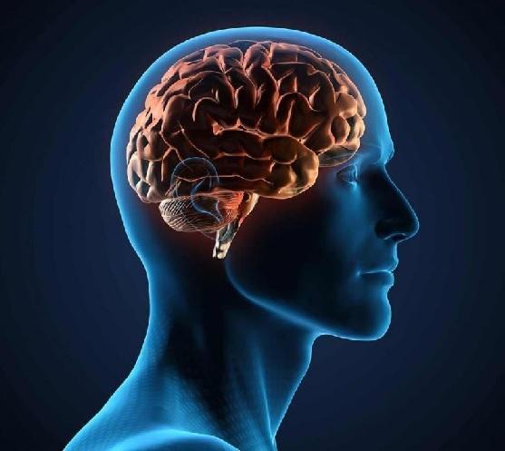 Neurostimulation Devices Market