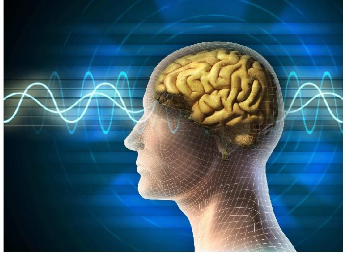 Central Nervous System (CNS) Therapeutics Market