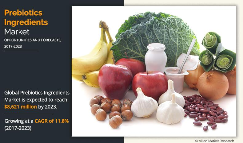 Prebiotics Ingredients Market