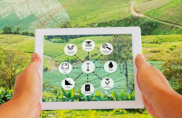 B2B Ecommerce in Agriculture Industry