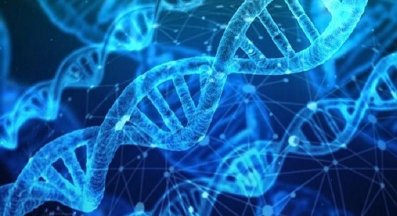 Cytogenetics Market