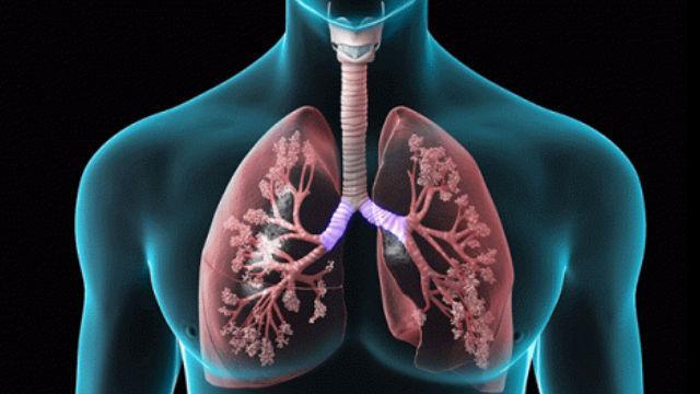 Respiratory Drug Delivery Formulation Market
