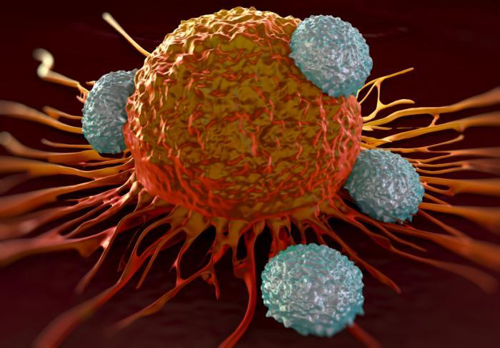 CAR-T Cell Therap Industry
