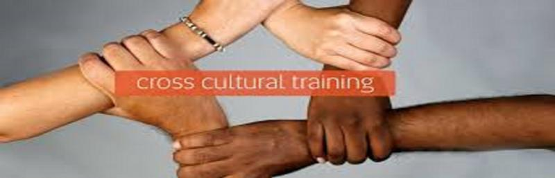 Cross-cultural Training Market