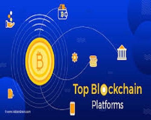 Blockchain Platforms Software Market- Future Development,