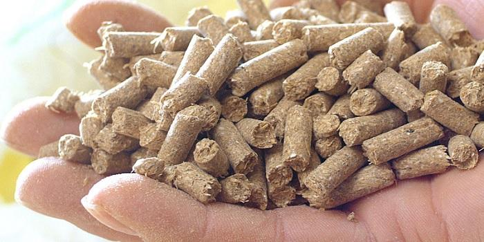 Animal Feed Additives Market