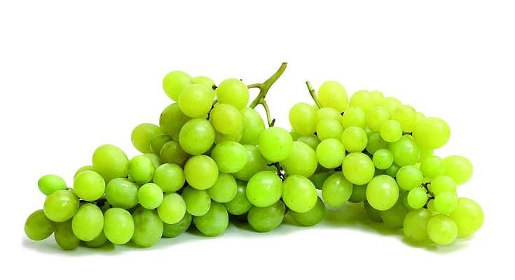 Grape Seed Oil Market