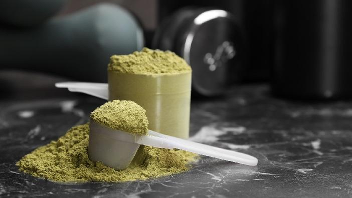 Plant Based Protein Supplement Market