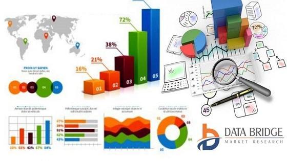 Customized Premixes Market