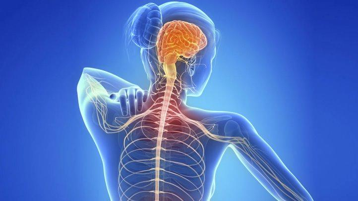 MULTIPLE SCLEROSIS THERAPEUTICS MARKET