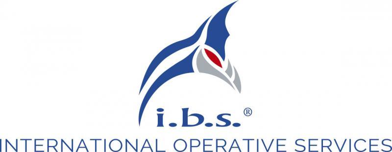 i.b.s. company logo