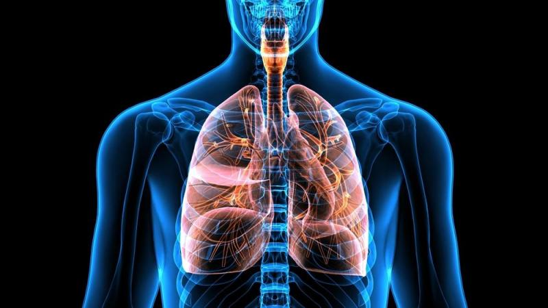 Chronic Obstructive Pulmonary Disease Market - Industry Trends and Forecast to 2026
