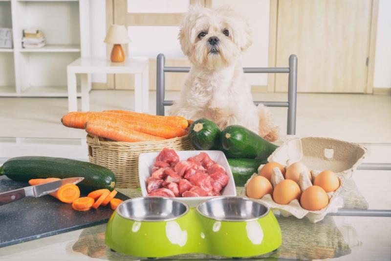 Natural and Organic Pet Food Market