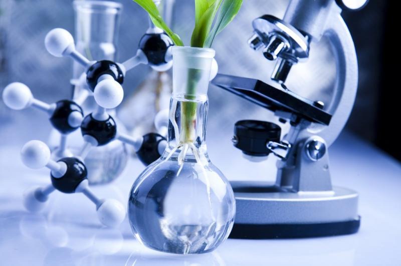 Progressive Report on Bio-Renewable Chemicals Market