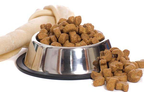 Marché des aliments pour animaux de compagnie congelés et lyophilisés pour voir la stabilité au milieu