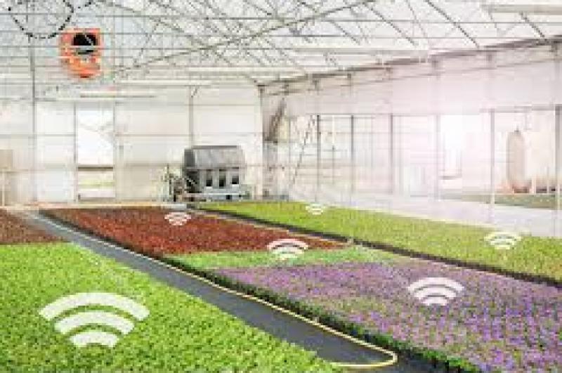 Smart Greenhouse Market 2020