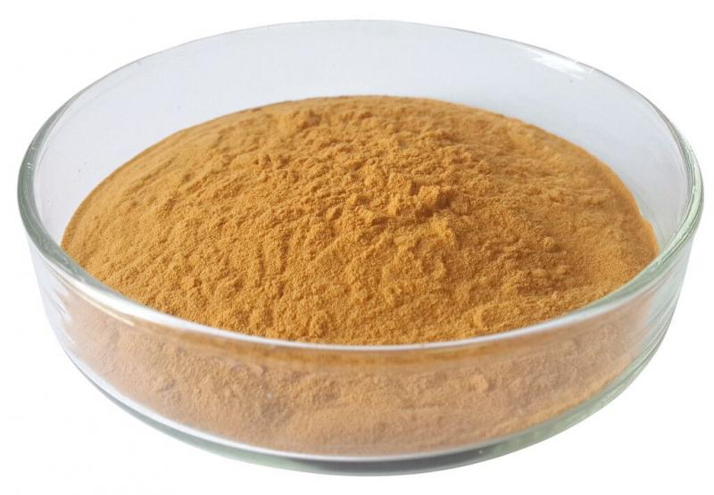 Global Caredhieacid Market Huge Growth Opportunity between