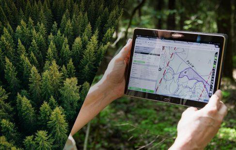 スマート林業市場